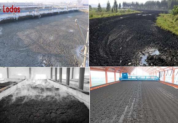 Carbonización De Lodos
