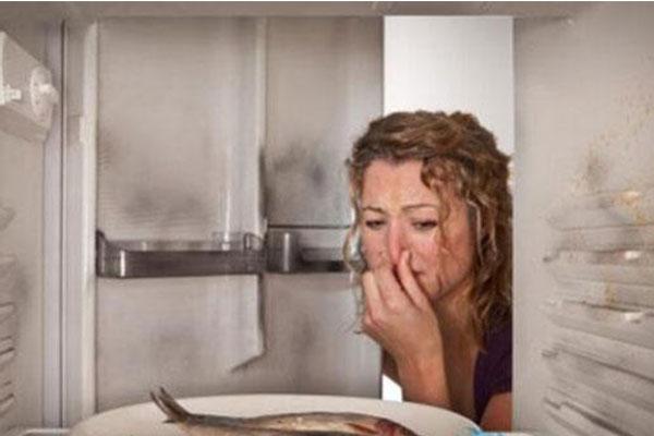 Desodorización de frigoríficos