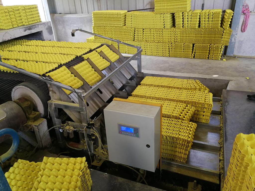 fábrica de cubetas de huevos