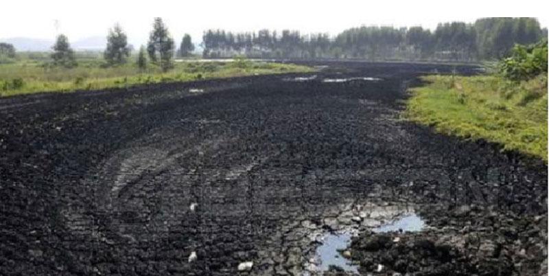 Lodo- la Materia Prima de Carbonizacion