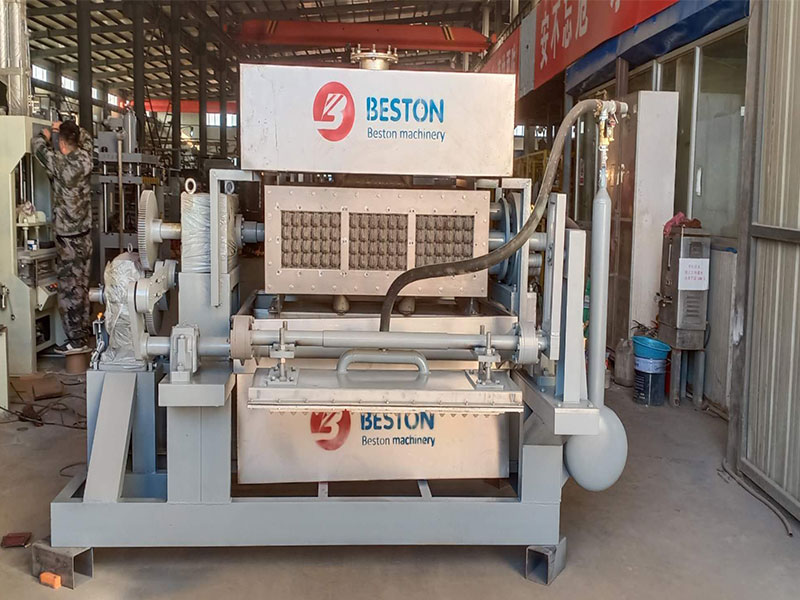 MLa máquina de cubetas de huevos BTF 3-4